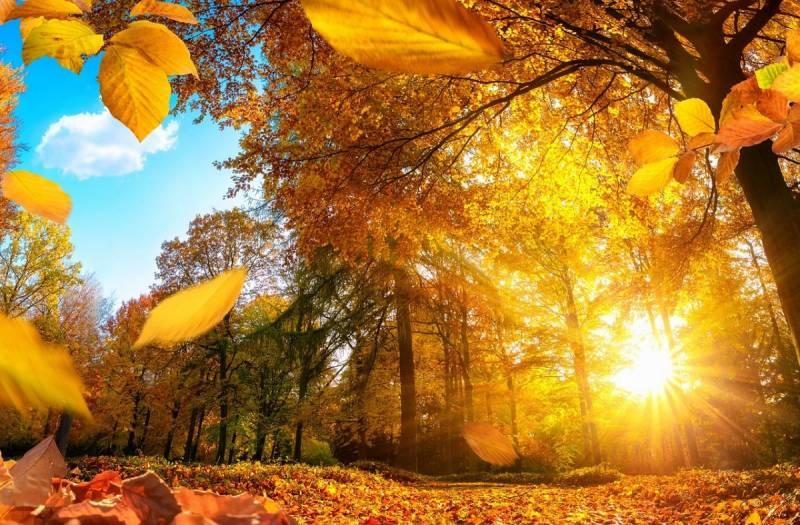 День осеннего равноденствия в 2021 году