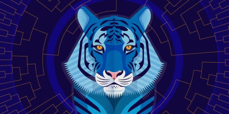 Водяной тигр символ 2022 года: какие цвета любит