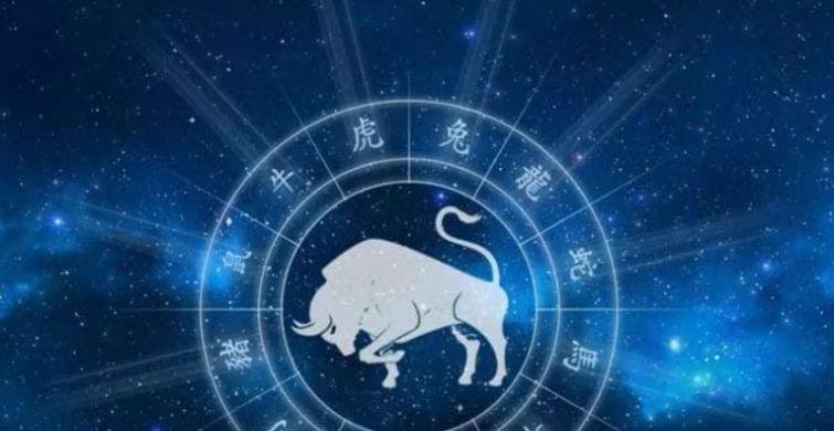 Какое животное будет главенствующим в 2021 году и как следует встречать праздник itemprop=