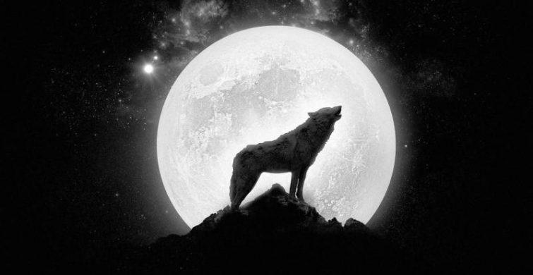 Почему полнолуние 28 января 2021 года называется Волчьим itemprop=