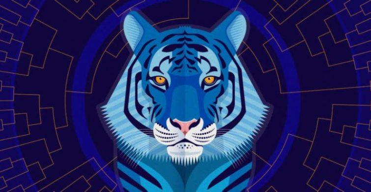 Водяной тигр символ 2022 года: какие цвета любит itemprop=